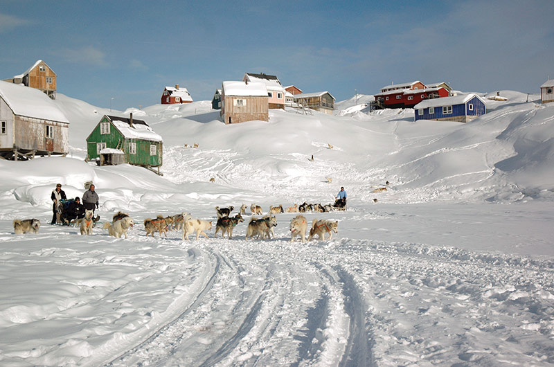 GREENLAND - With sleigh dogs in the Arctic